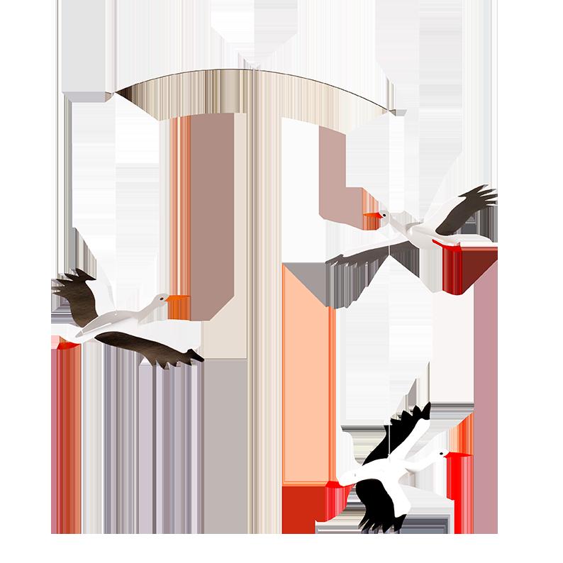 Lucky Storks