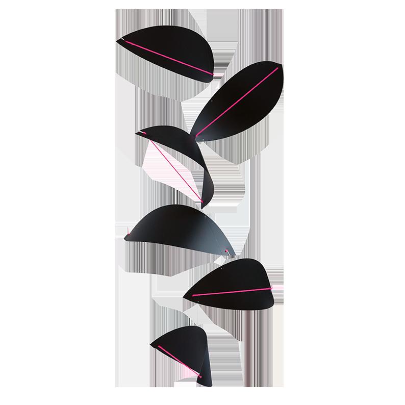 Kites, black